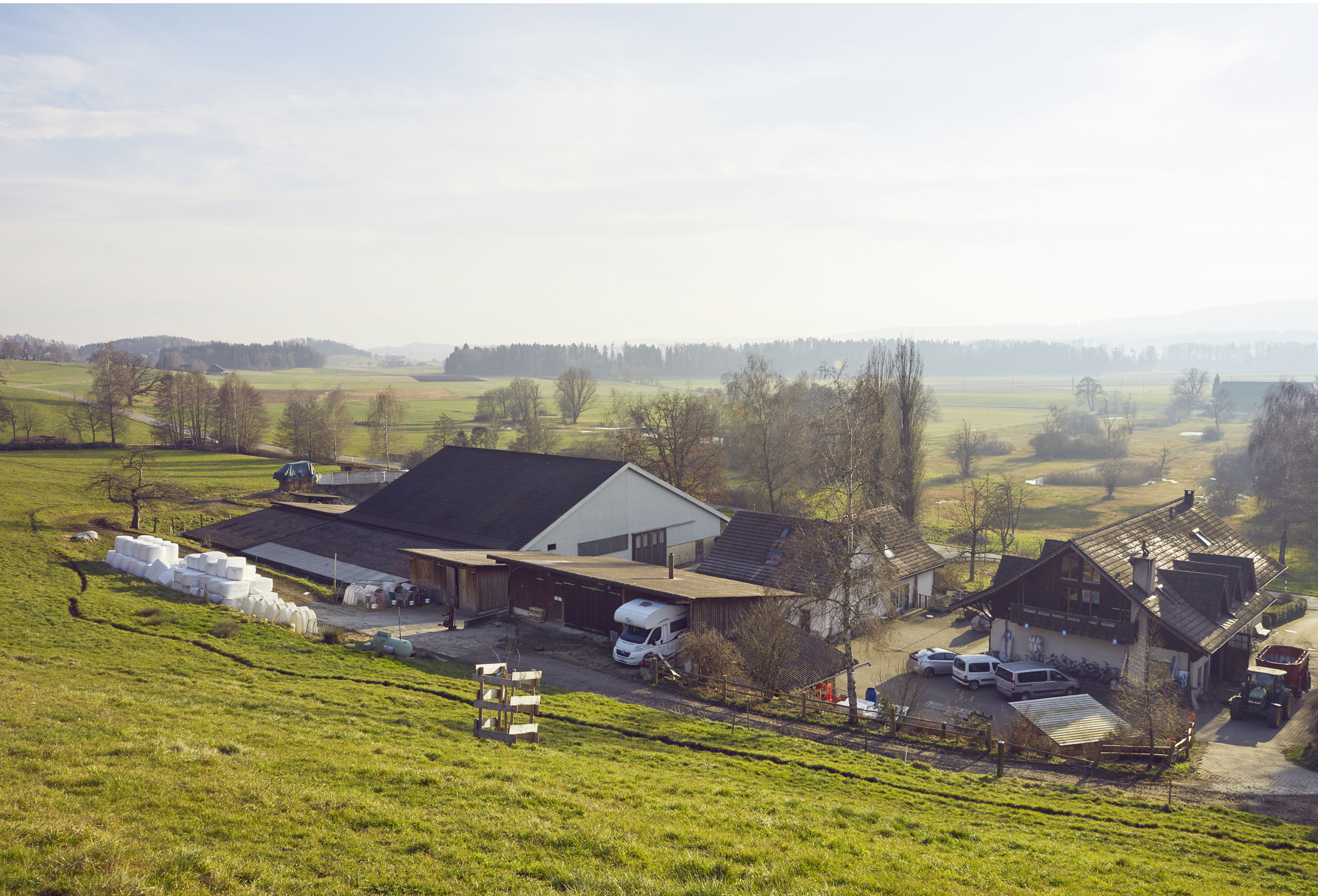 vicafe's milk supplier farm Birkenhof in uster switzerland