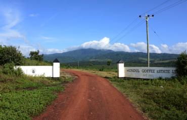 Mondul: Kaffee & Community