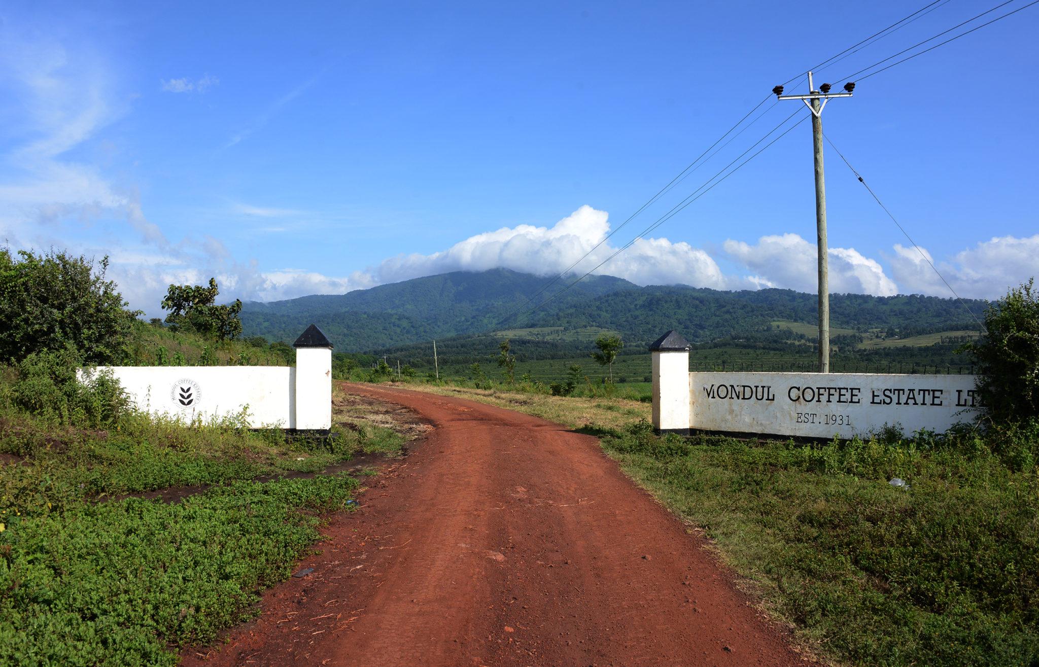 Gate to Mondul Estate