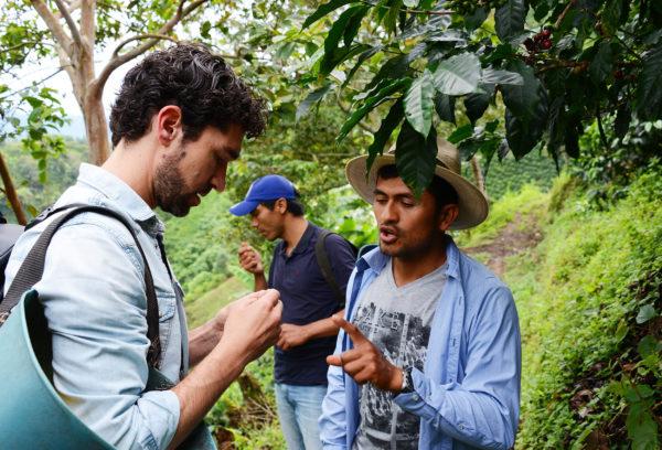 Oscar und Ramon begutachten die Kaffeequalität