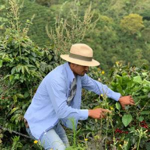 Finca Los Nogales Coffee Subscription