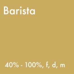 Vicafe Barista Job